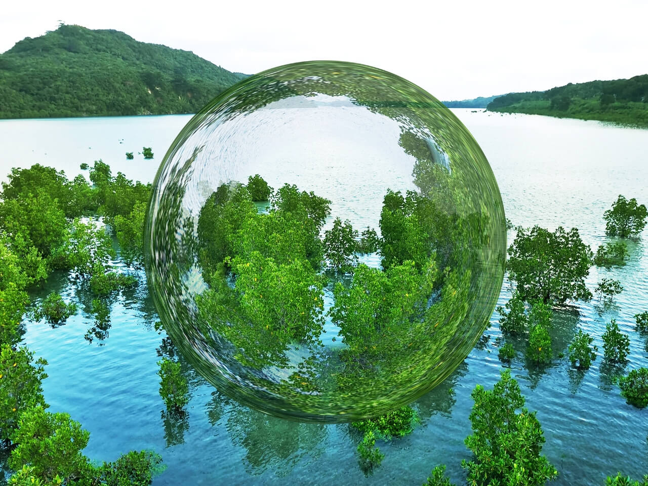 自然の中に将来が見える