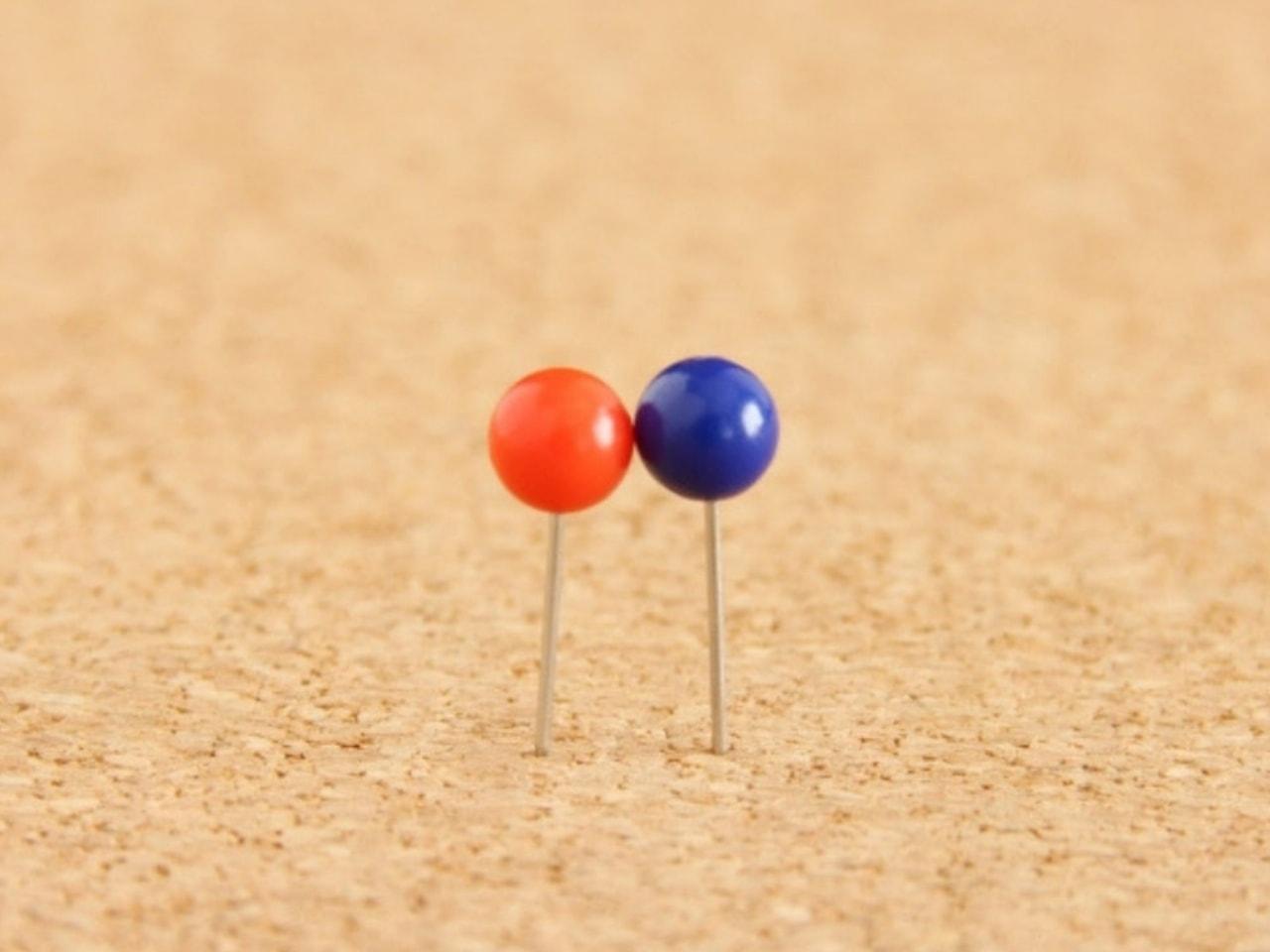 ペアでくっつき合う赤と青のピン