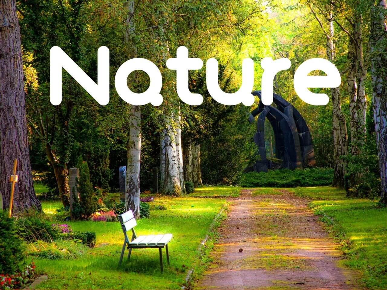 心休まる自然な風景