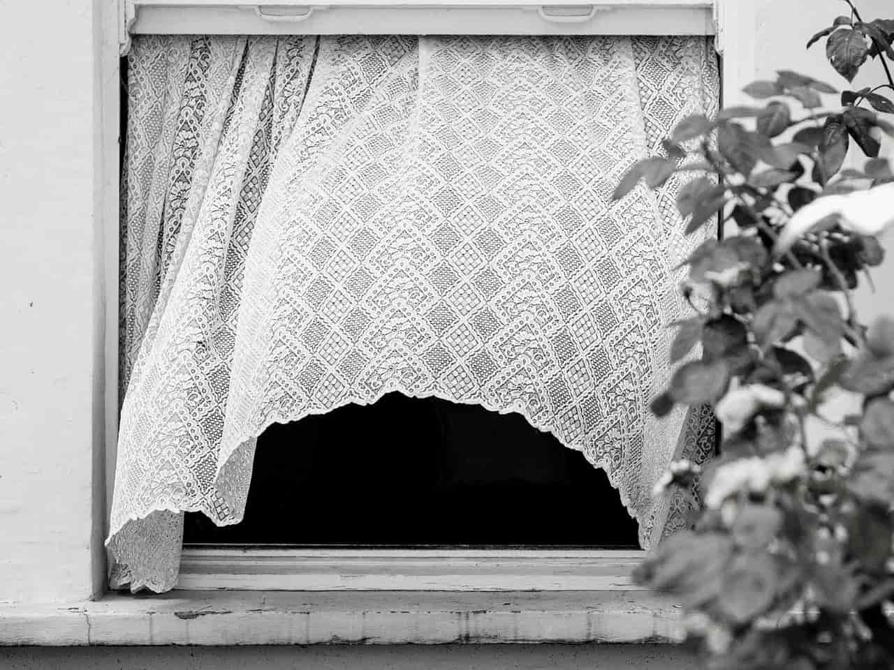 開けっ放しの窓