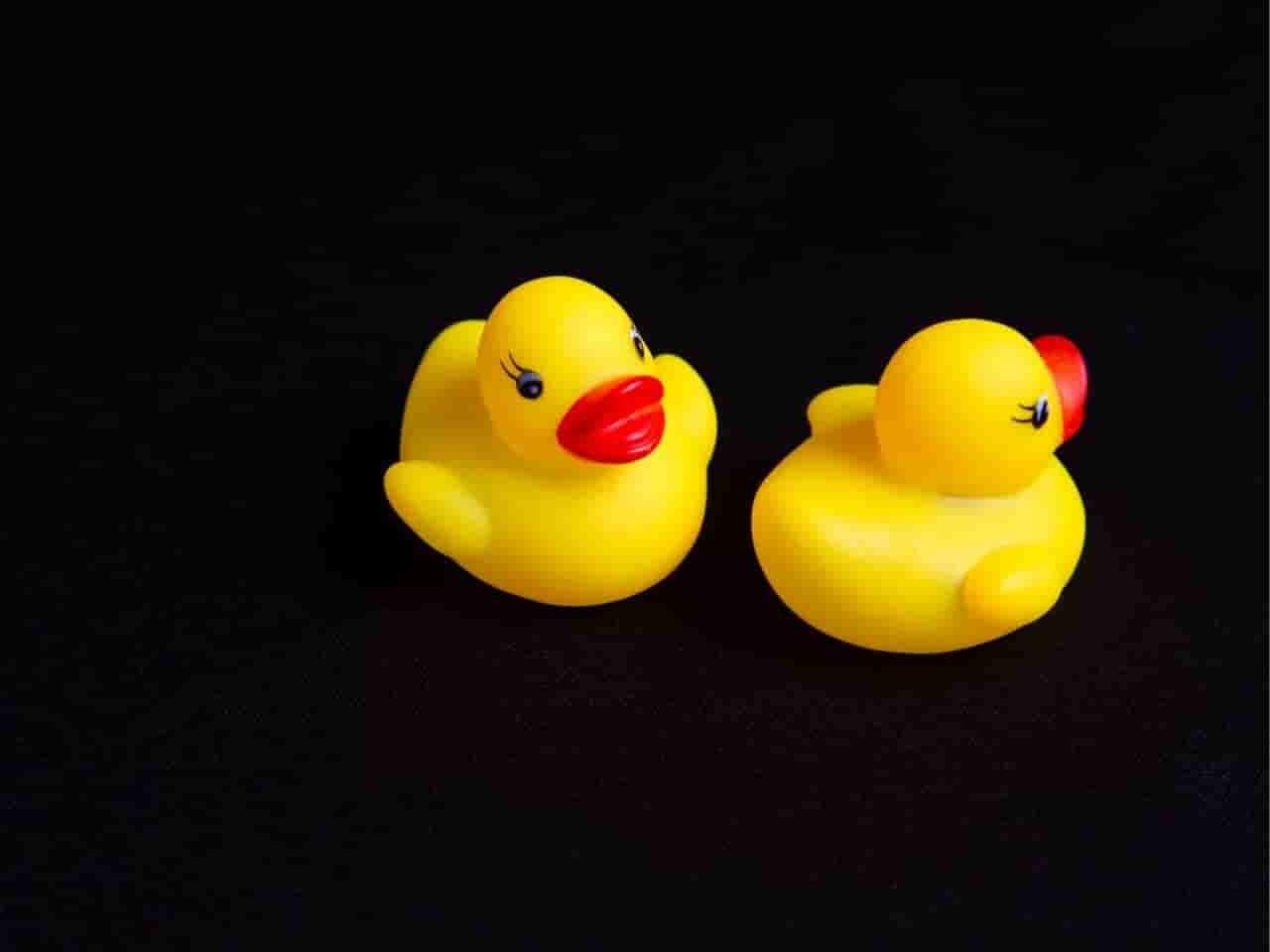 お風呂に浮かぶ2つのアヒルの人形