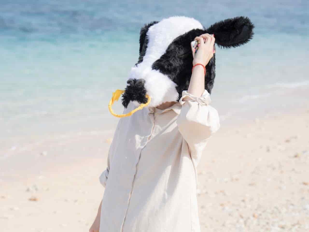 休暇を楽しむ牛のマスクをつけた人