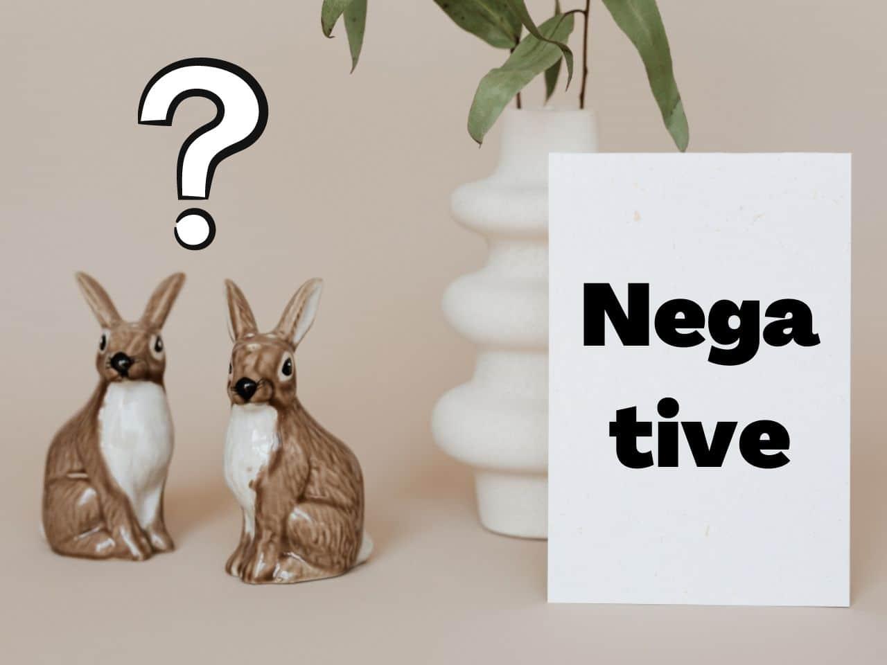 ネガティブの言葉に疑問を持つ二匹のウサギ