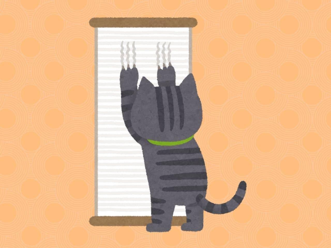 壁で爪をとぐ猫