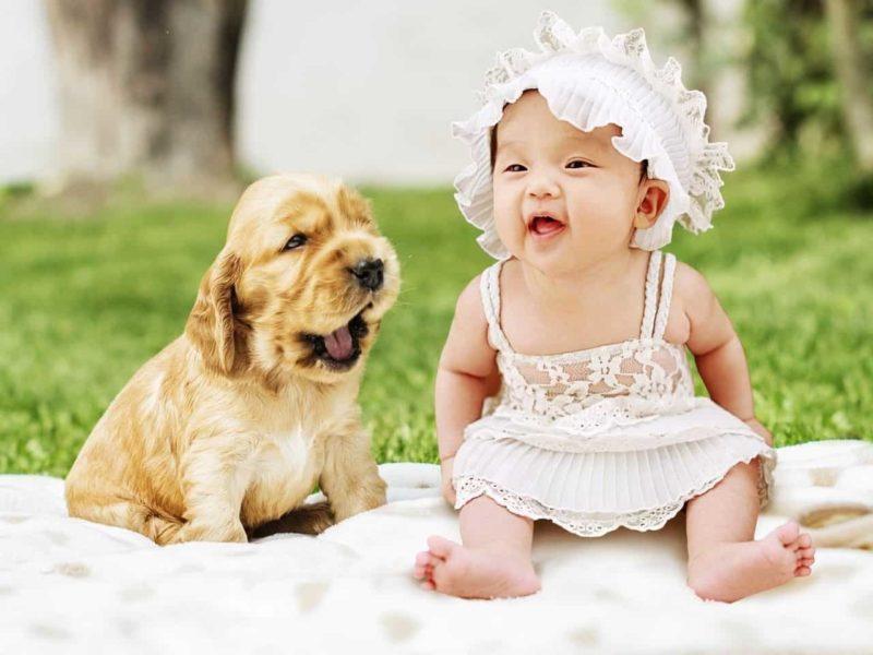 笑う赤ちゃんと子犬