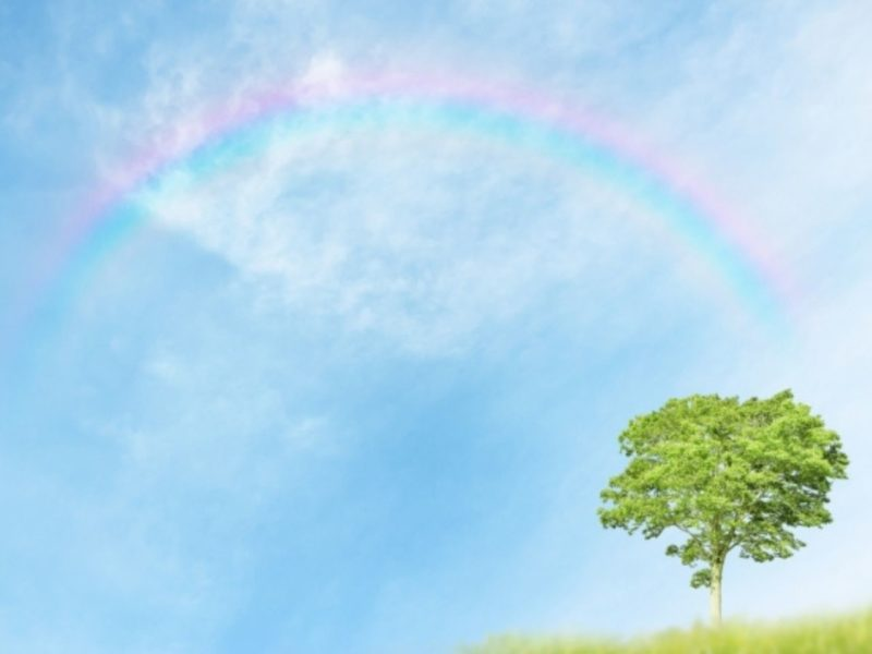 草原にかかる虹